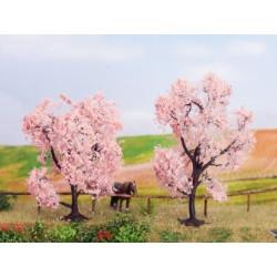 Almond Trees x2