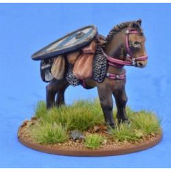 Pack Pony (Kite Shield)