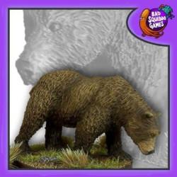 Barry - Brown Bear