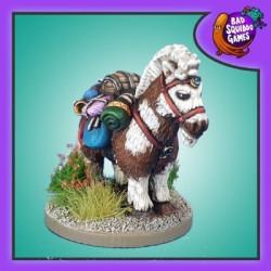 Norbert, Pack Pony