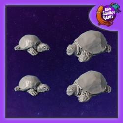 Tortoises (4