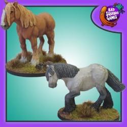 Pete & Tom, Shire Horses