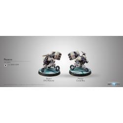 Probots (REM, EVO Repeater, Combi Rifle)